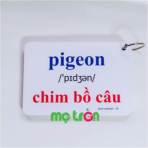 Bộ Flashcard cho bé Tiếng Anh KatchUp - Các loài chim