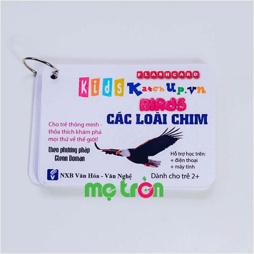 <p>- Bộ Flashcard cho bé Tiếng Anh KatchUp - Các loài chim làm từ chất liệu giấy glossy cao cấp, 4 góc được bo tròn an toàn.</p> <p>- Bộ gồm 20 thẻ thông minh về chủ đề các loài chim.</p> <p>- Bao gồm các từ vựng tiếng Anh cùng tiếng Việt và phiên âm cho bé học hỏi nhanh chóng.</p>