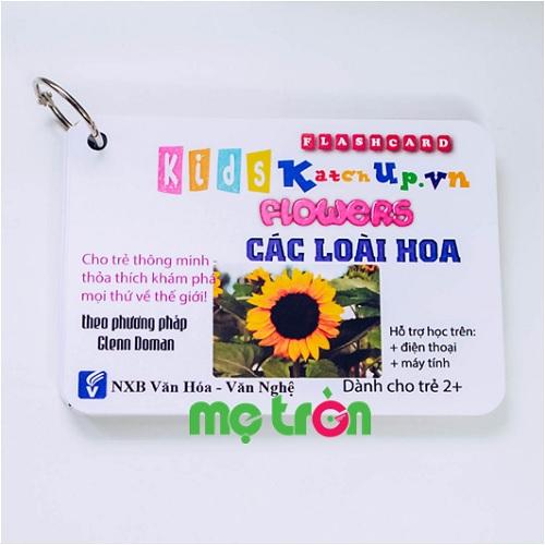 <p>- Bộ Flashcard cho bé Tiếng Anh KatchUp - Các loài hoa gồm 20 thẻ từ vựng thông minh.</p> <p>- Thiết kế mỗi thẻ với 4 góc bo tròn đảm bảo an toàn cho con khi chơi.</p> <p>- Hình ảnh sinh động, đẹp mắt tăng hứng thú vui chơi học tập cho con cưng.</p>